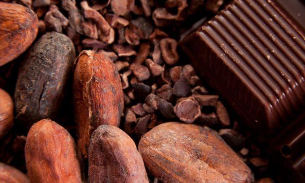 Is rauwe cacao gezond? Voordelen van rauwe cacao poeder