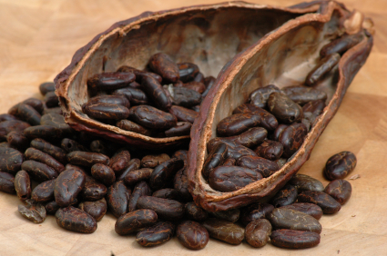 2 theelepels rauwe cacao per dag gaan de veroudering van hersenen tegen
