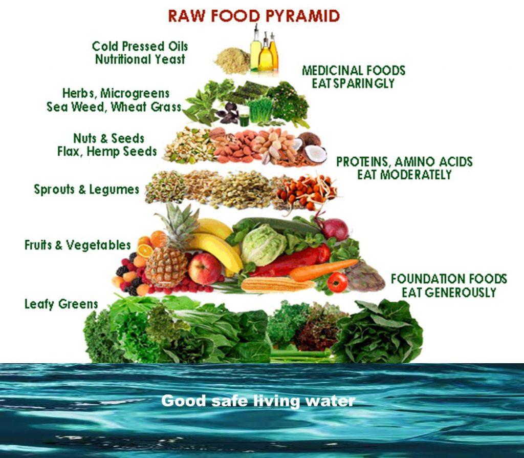 Raw Food Dieet voedselpiramide