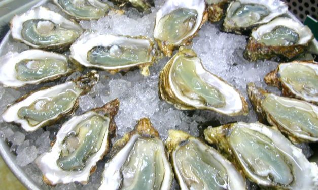 Zink in voeding: 15 redenen om af en toe een oestertje te eten