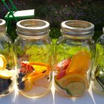 water met fruit recept