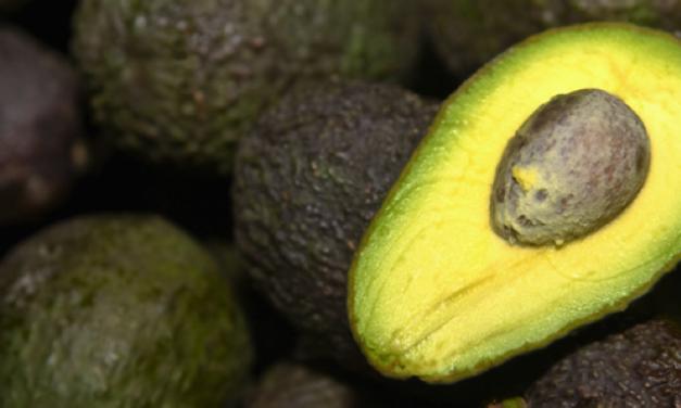 6 bewezen gezondheidsvoordelen van avocado