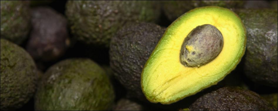 avocado-gezond