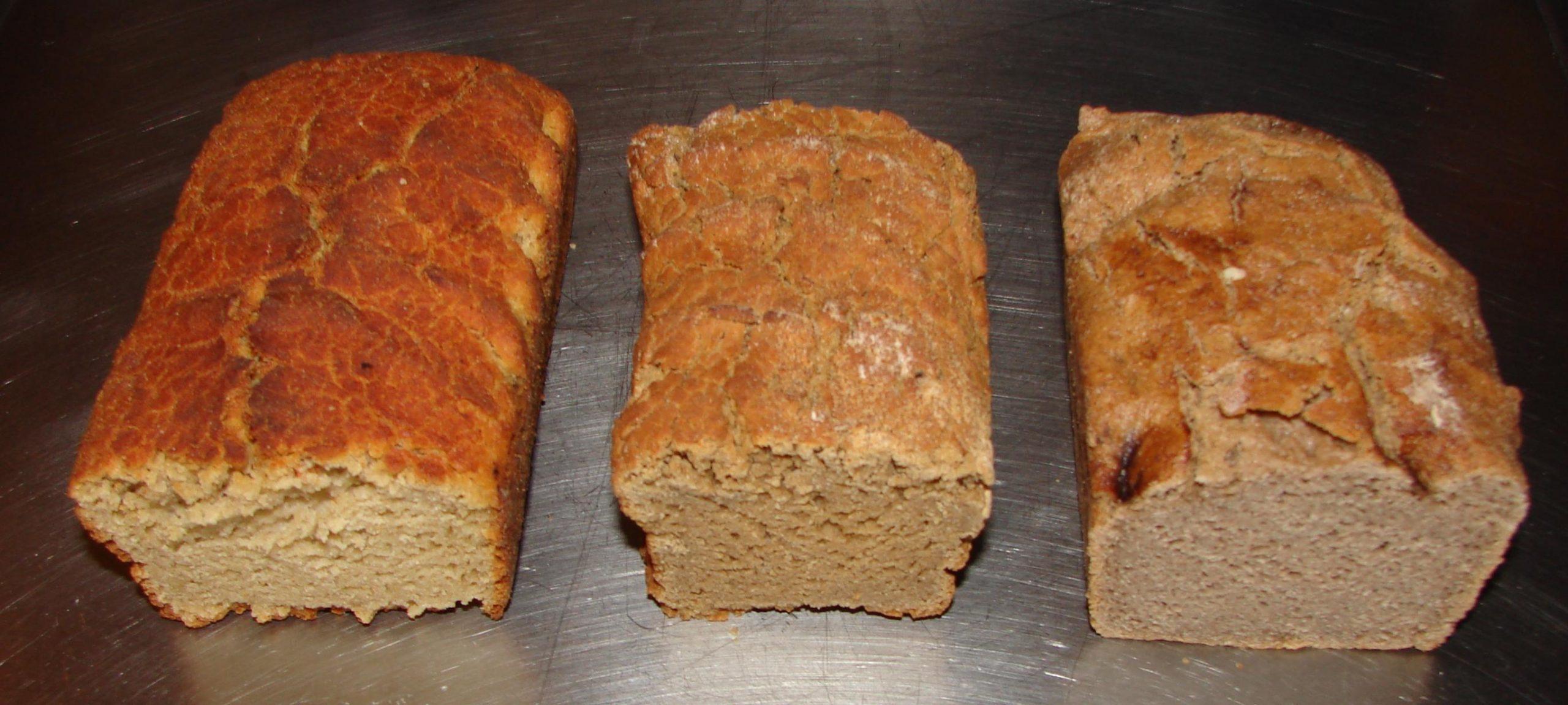 glutenvrij brood recept